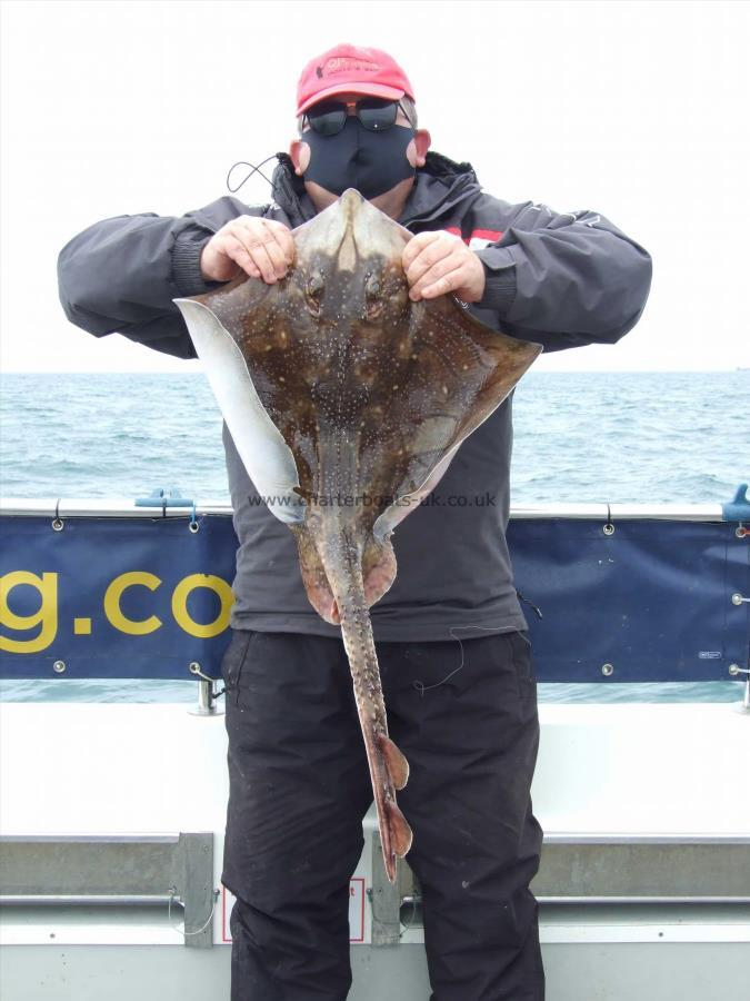 12 lb Undulate Ray by Stephan Attwood