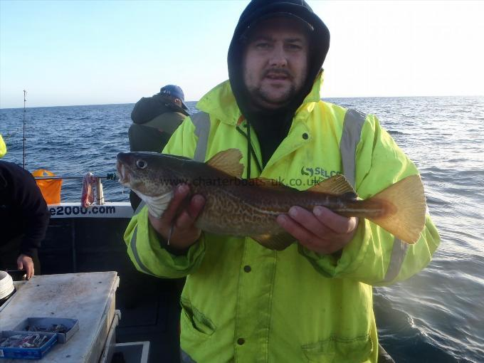 2 lb 12 oz Cod by Unknown